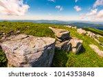 carpathian alps with huge... | Shutterstock . vector #1014353848