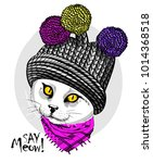 vector white cat with knitted... | Shutterstock .eps vector #1014368518