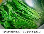 beautiful greenery as a... | Shutterstock . vector #1014451210