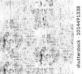 grunge texture black and white. ... | Shutterstock . vector #1014491338