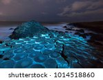 the giant's causeway at night... | Shutterstock . vector #1014518860