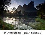 White Bougainvillea Bush With...