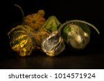 decaying gourds. end of life ... | Shutterstock . vector #1014571924