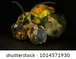 decaying gourds. end of life ... | Shutterstock . vector #1014571930