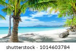 summer beach palm trees | Shutterstock . vector #1014603784