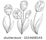 tulip flower graphic black... | Shutterstock .eps vector #1014608143