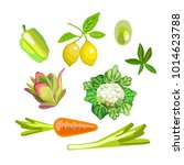 set of vegetables. cabbage ... | Shutterstock .eps vector #1014623788