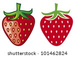 strawberry vector illustration | Shutterstock .eps vector #101462824