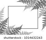 fern frond twigs frame vector... | Shutterstock .eps vector #1014632263