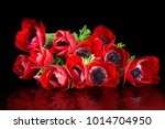 red anemone bouquet on black... | Shutterstock . vector #1014704950