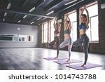 attractive young sport girls... | Shutterstock . vector #1014743788