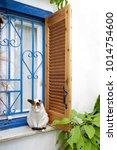 cat sitting on a window ledge ...   Shutterstock . vector #1014754600