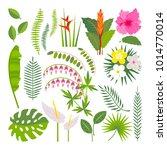 vector set of tropical leaves.... | Shutterstock .eps vector #1014770014