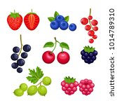 set of fresh berries  isolated ... | Shutterstock .eps vector #1014789310