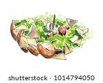 watercolor hand drawn sketch... | Shutterstock . vector #1014794050