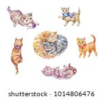 set of watercolor kittens. cute ... | Shutterstock . vector #1014806476