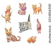 watercolor cats. cute pets... | Shutterstock . vector #1014806500