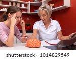 two women talking abaut brain... | Shutterstock . vector #1014829549