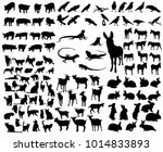 isolated large set of animals | Shutterstock .eps vector #1014833893