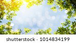 spring background with green... | Shutterstock . vector #1014834199