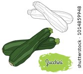hand drawn colorful zucchini   Shutterstock .eps vector #1014859948