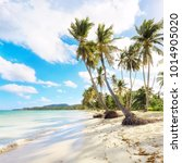 panorama of secluded beach of ...   Shutterstock . vector #1014905020