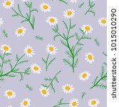 daisy flowers. seamless pattern.... | Shutterstock .eps vector #1015010290