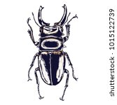 color insects beetle bug....   Shutterstock . vector #1015122739