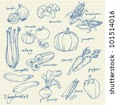 set of vegetables doodles vector | Shutterstock .eps vector #101514016