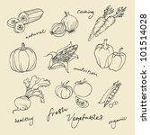 set of vegetables doodles vector | Shutterstock .eps vector #101514028