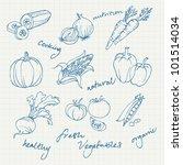 set of vegetables doodles vector | Shutterstock .eps vector #101514034