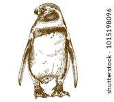 vector antique engraving... | Shutterstock .eps vector #1015198096