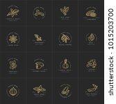 set design templates golden... | Shutterstock .eps vector #1015203700