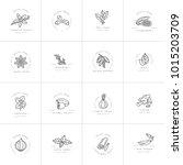 set design templates monochrome ... | Shutterstock .eps vector #1015203709