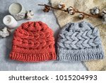 knitted caps in the interior... | Shutterstock . vector #1015204993