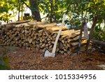 lumberjack chopped the tree...   Shutterstock . vector #1015334956