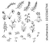hand drawn floral elements ... | Shutterstock .eps vector #1015360744