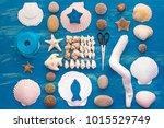 decorative arrangement of sea... | Shutterstock . vector #1015529749