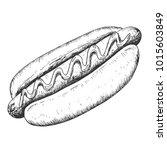 hand drawn hot dog sketch ... | Shutterstock .eps vector #1015603849