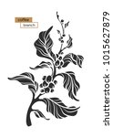 vector coffee branch with leaf... | Shutterstock .eps vector #1015627879