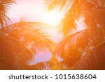 beautiful light from the nature ... | Shutterstock . vector #1015638604