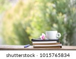 soft pink pigmy rose with white ... | Shutterstock . vector #1015765834