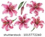 Set Of Watercolor Flowers  Han...