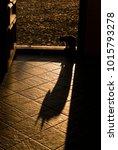 evil cat in the doorway backlit ... | Shutterstock . vector #1015793278