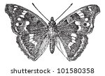 lesser purple emperor or... | Shutterstock .eps vector #101580358