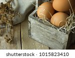 brown organic eggs on straw in... | Shutterstock . vector #1015823410