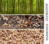 steps of production wood pellets | Shutterstock . vector #1015825939