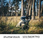 Stock photo a photograph of a cat who loves to explore the outdoors 1015839793