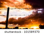Barbed Wire Fence And The Sun...