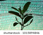 green shading net | Shutterstock . vector #1015894846